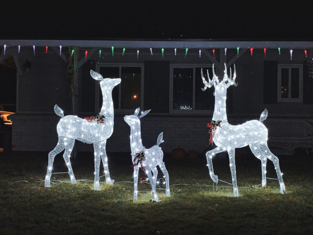 Electric Reindeer