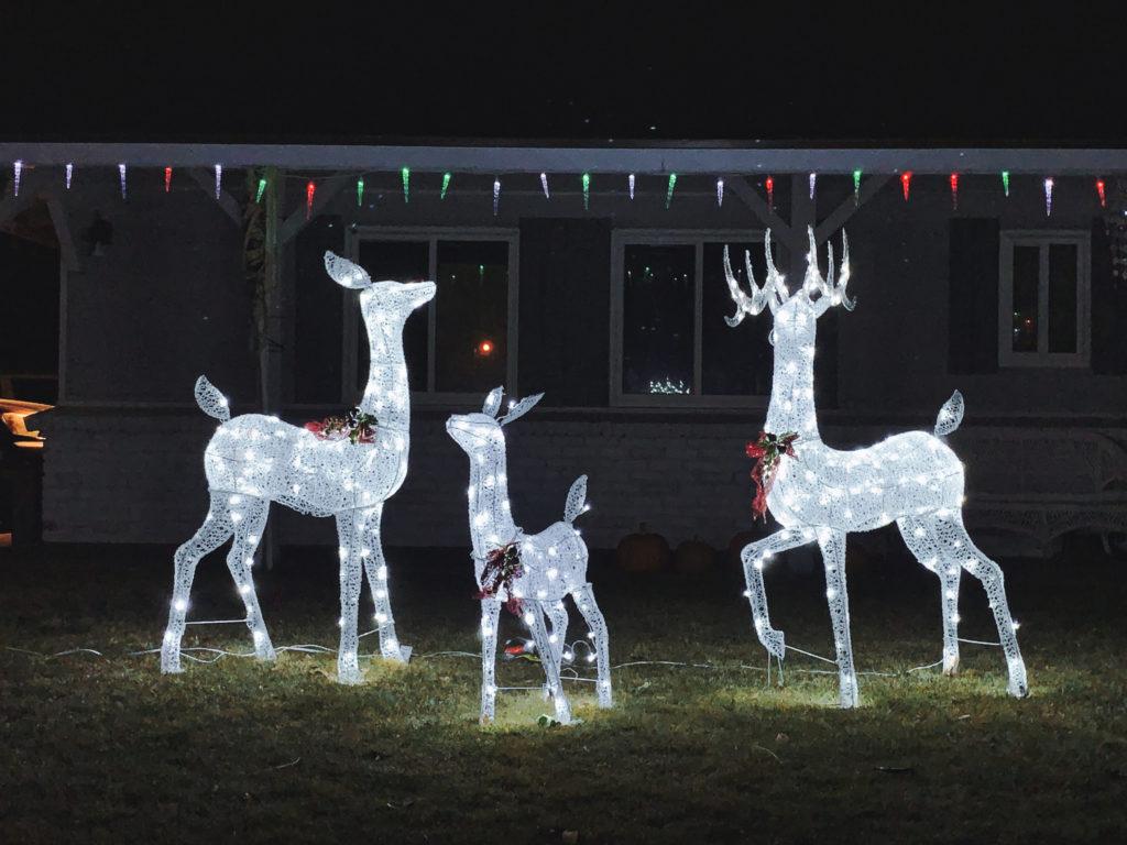 Electric Reindeer